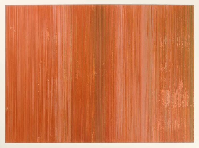 Lápis de cor, pigmentos e gesso sobre papel. 76x56cm