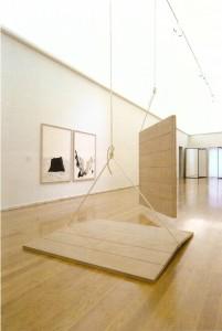 Madeira, corda, roldanas, tinta esmalte, altura variável 270 x 180 cm