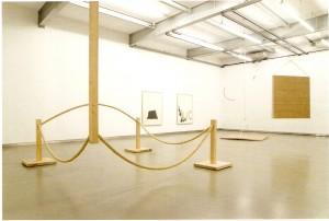 Madeira e corda, altura variável 44 x 344 cm