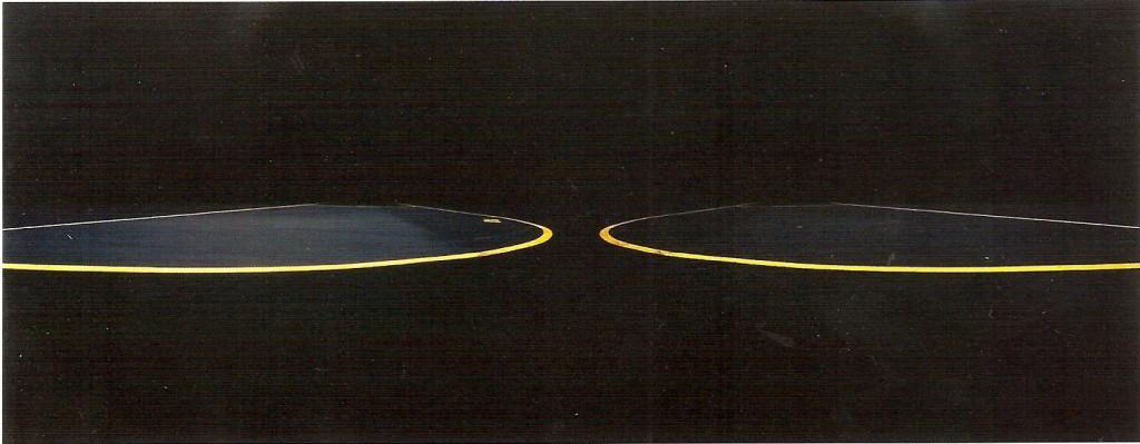 Prova por revelação cromogénea, colada sobre alumínio e diasec, 100  x 250 cm
