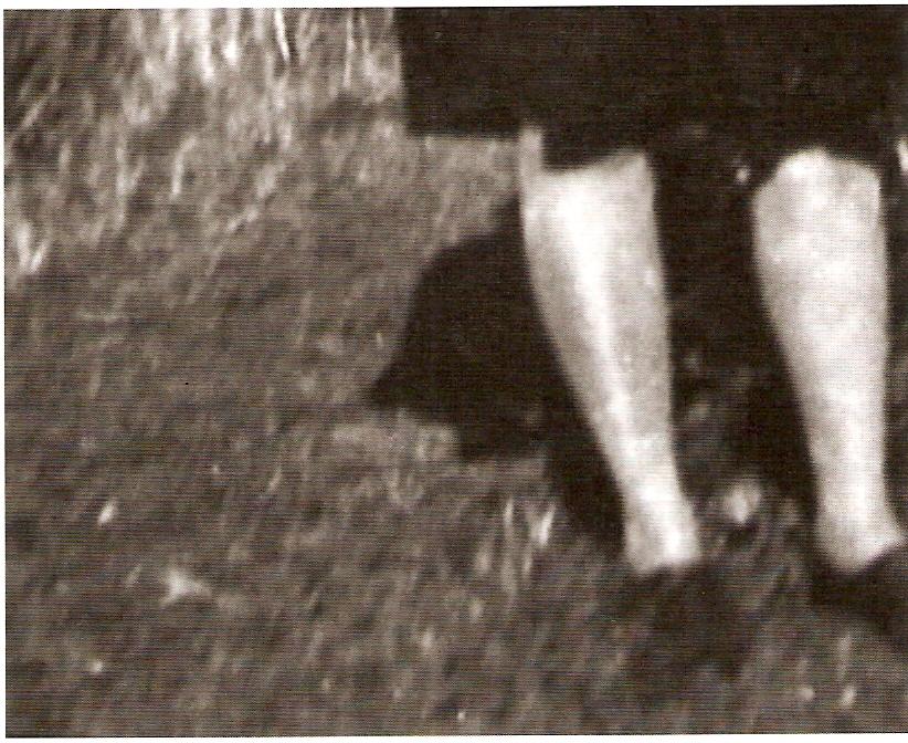 DV, PAL, imagem p/b, stereo, 7'
