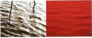 Impressão a jacto de tinta sobre papel fotográfico Epson, Edição de 2 + IPA 100 x 255cm