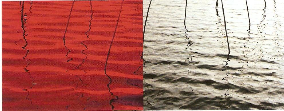 Impressão a jacto de tinta sobre papel fotográfico Epson, Edição de 2 * IPA 100 x 255cm