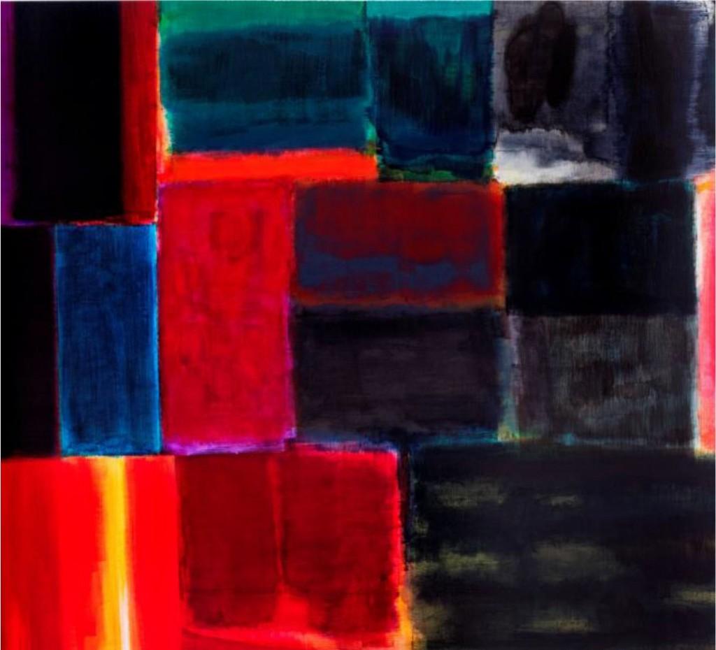 Obras de Rui Serra na Colecção António Cachola-16